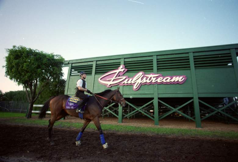 Florida Derby, time, channel, live stream, when, where