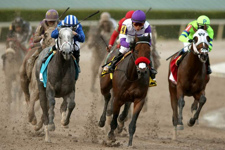 Kentucky Derby points, standings, horses,