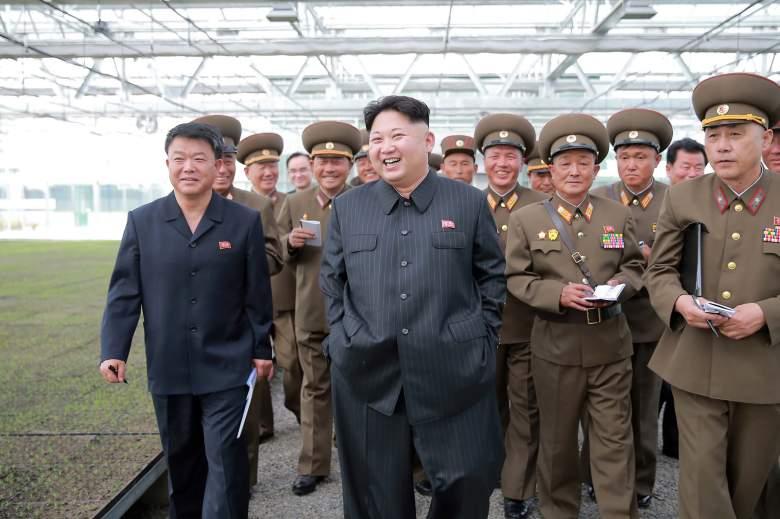 Kim Jong-Un North Korea, Kim Jong-Un tree nursery, Kim Jong-Un photos