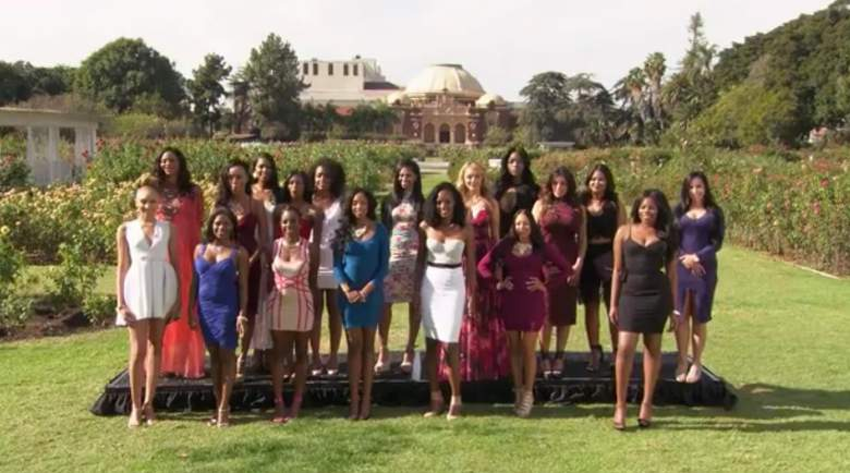 match made in heaven contestants, match made in heaven girls, match made in heaven ladies, match made in heaven cast