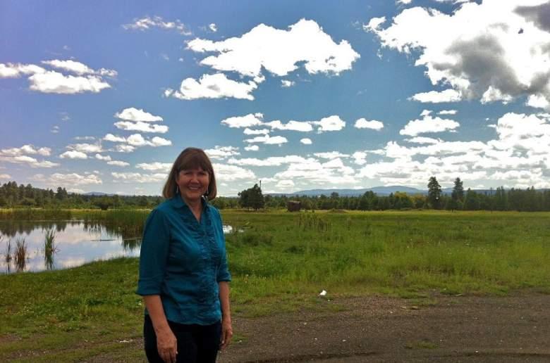 Ann Kirkpatrick CISPA, Ann Kirkpatrick online privacy, Ann Kirkpatrick CISPA vote