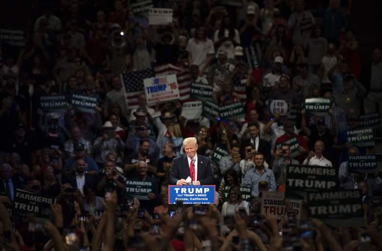 Donald Trump rally, Donald Trump vp, Donald Trump crowd