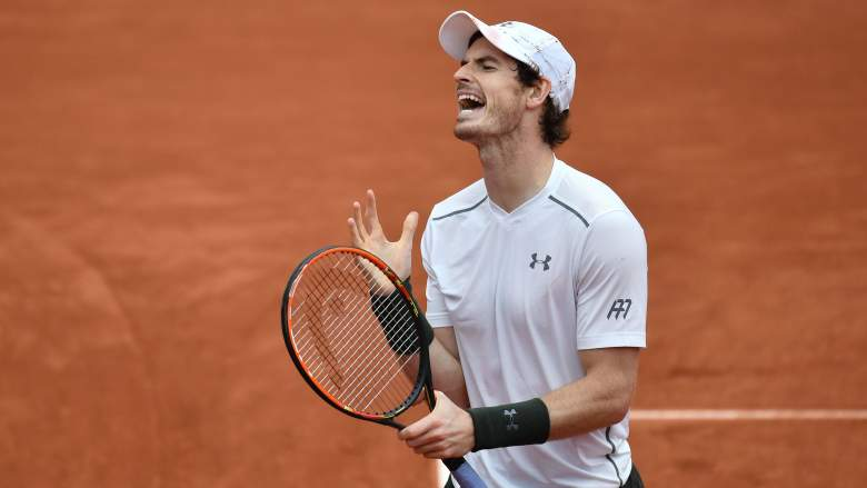 murray vs wawrinka, murray vs wawrinka date, murray vs wawrinka start time, french open semifinals date, french open semifinal schedule, french open men's semifinals, murray wawrinka french open semis
