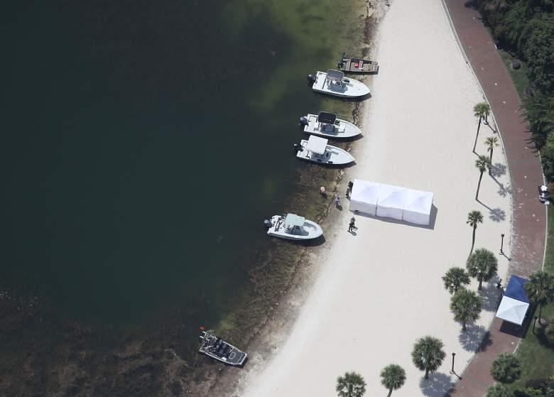 Orlando Alligator, Lane Graves, death by alligator, dragged by alligator