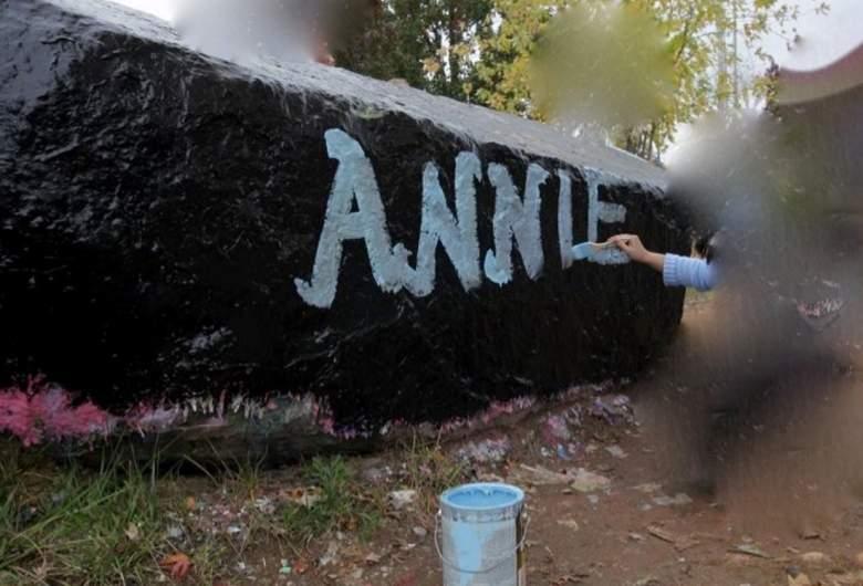 Annie McCann Death, Annie McCann ABC 20/20