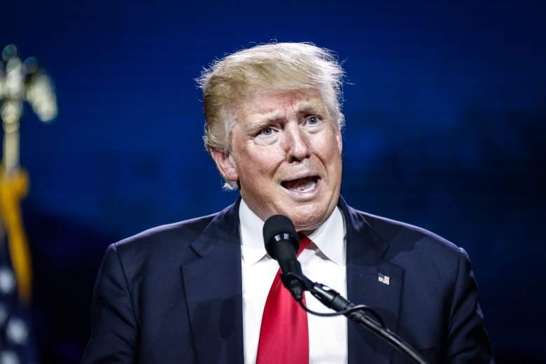 Donald Trump, Donald Trump face, Donald Trump hair, RNC