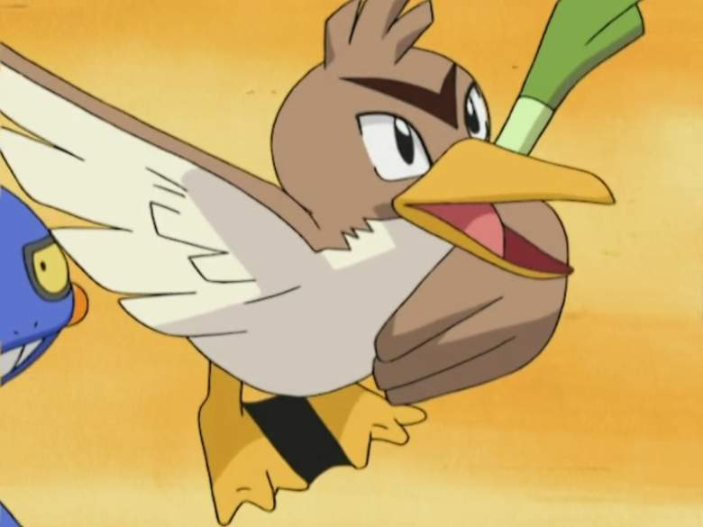 Pokemon Farfetchd, Pokemon anime Farfetchd, Pokemon Farfetch'd