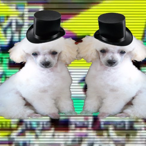 PoodleCorp's Twitter profile picture. (Twitter/PoodleCorp)