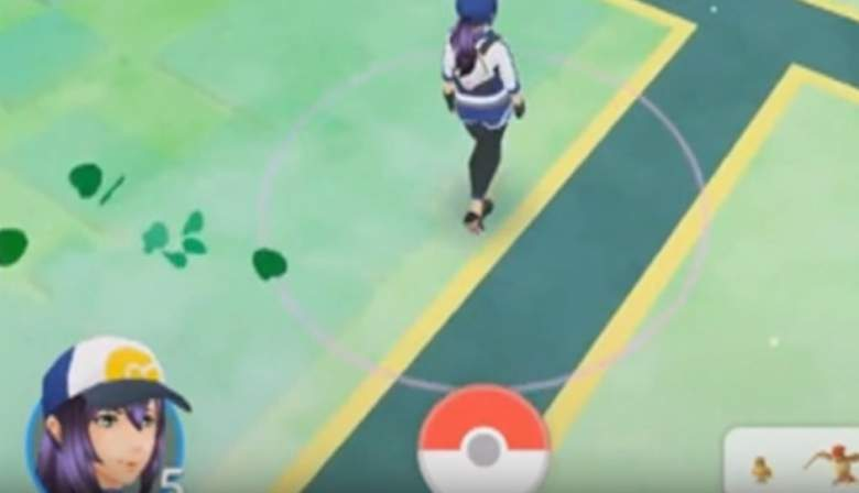 Rustling green leaves signify areas where Pokemon are likely to appear. (Niantic)