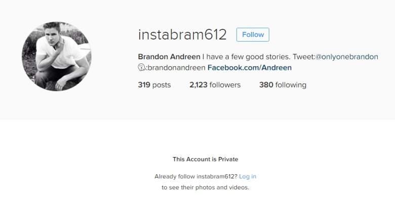 Brandon Andreen, Brandon Bachelor In Paradise 3, Brandon Andreen The Bachelorette, Brandon Andreen Desiree Hartsock, Brandon Andreen Instagram, Brandon Andreen Facebook