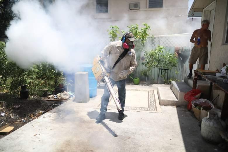 zika virus miami, zika virua miami beach