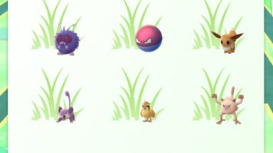 pokemon grass