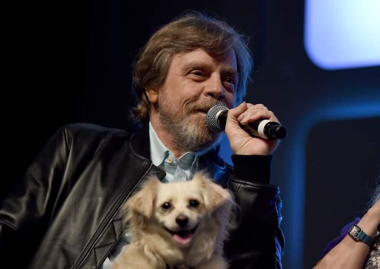 Mark Hamill, Star Wars Live Action TV Series, Star Wars TV Series