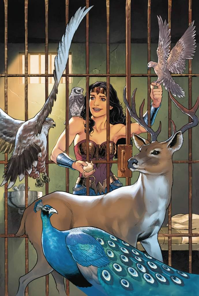 Wonder Woman, DC Comics, Wonder woman Year One, Nicola Scott