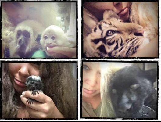 Trisha Meyer, Trisha Meyer Houston, Trisha Meyer tiger, Trisha Meyer animals