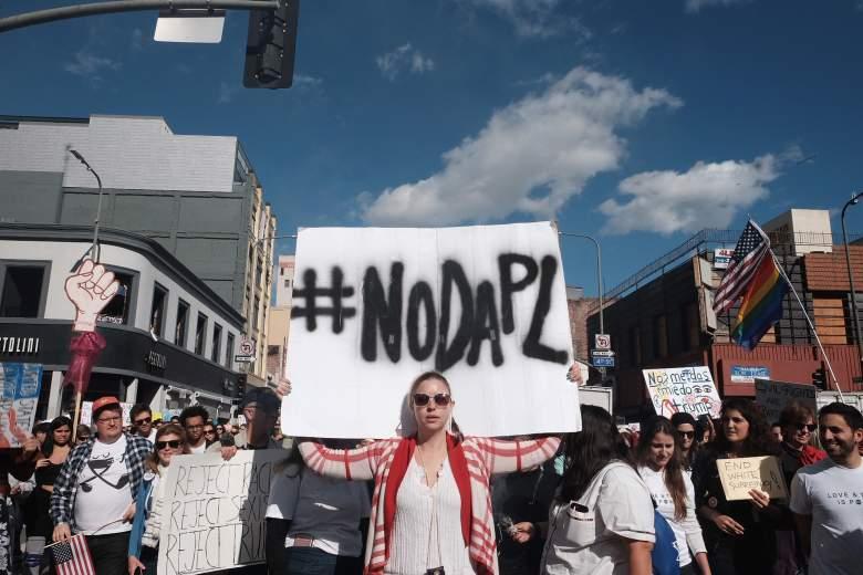 dapl protest signs