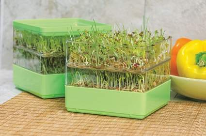 Gardens Alive! Two-Tiered Seed Sprouter