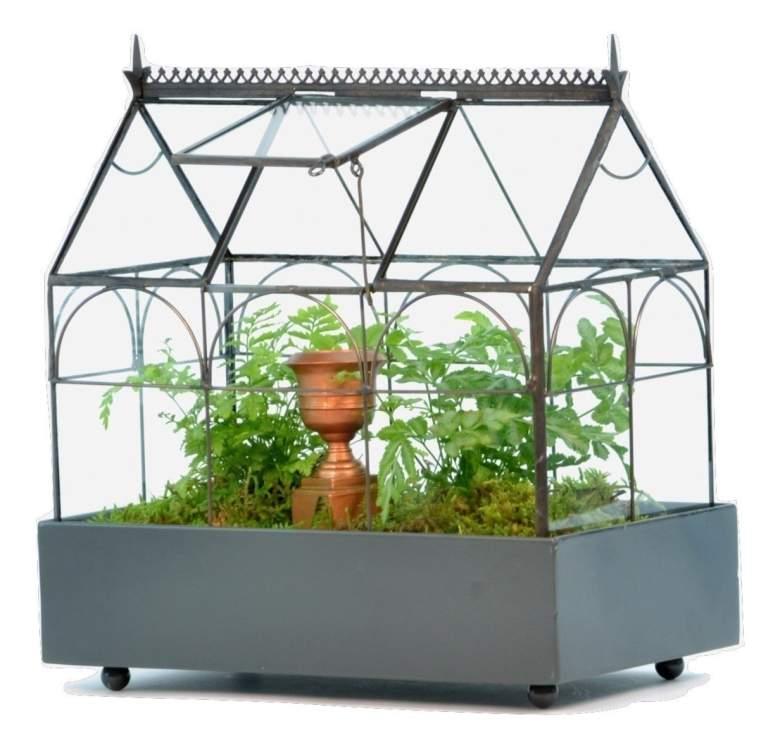 h potter terrarium, wardian case, glass planter