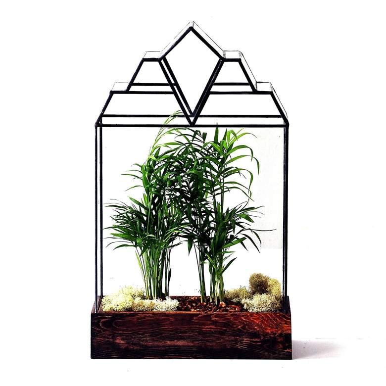leadhead glass detroit terrariums, wardian case
