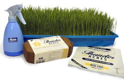 Thunder Acres Complete Wheatgrass Growing Kit