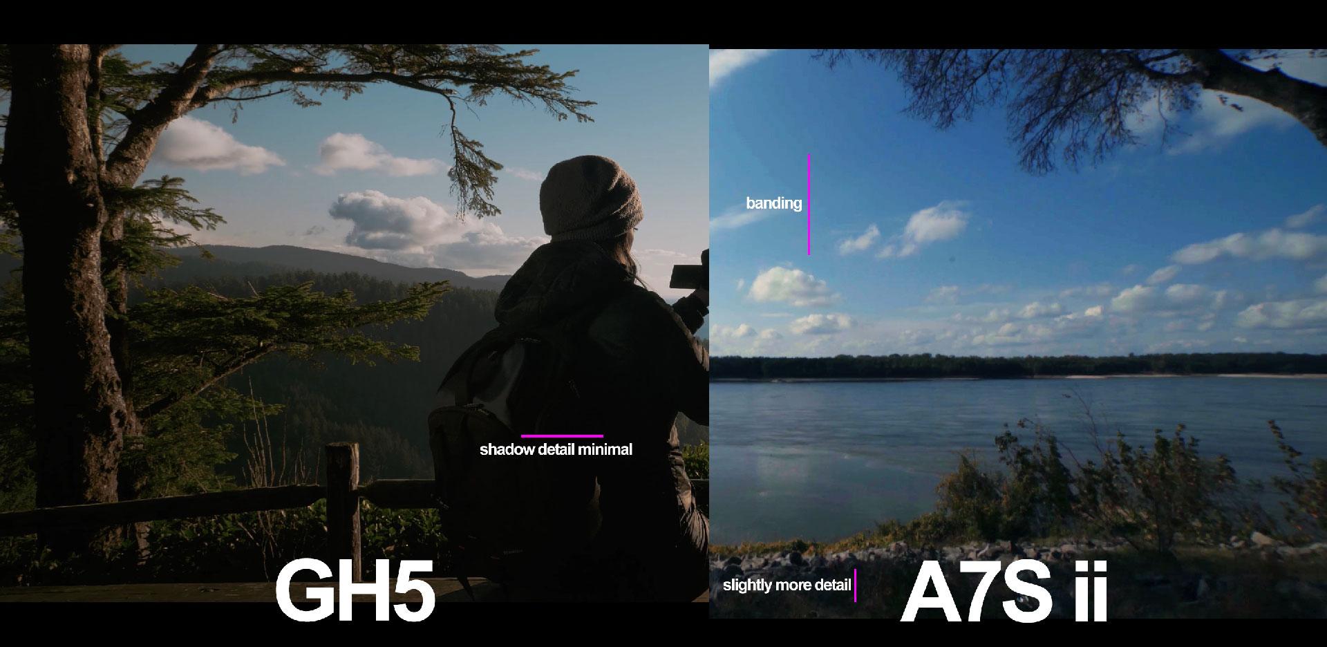 gh5-a7s ii-dynamic range-color-log