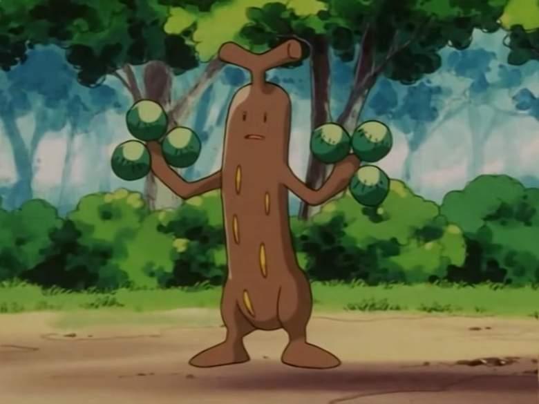 Sudowoodo pokemon, Sudowoodo pokemon anime, Sudowoodo pokemon go