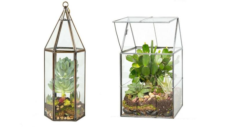 deco terrarium hanging