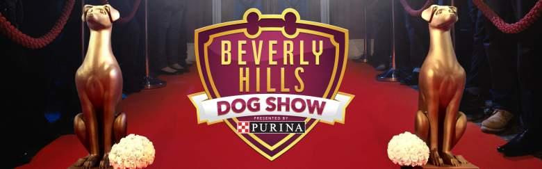 Beverly Hills Dog Show, Beverly Hills Dog Show 2017, Beverly Hills Dog Show Live Stream, Watch Beverly Hills Dog Show Online
