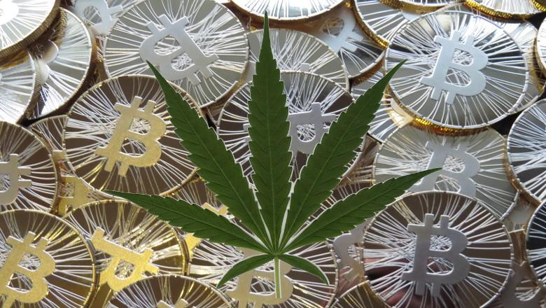 best marijuana cryptocurrency to mine 2021