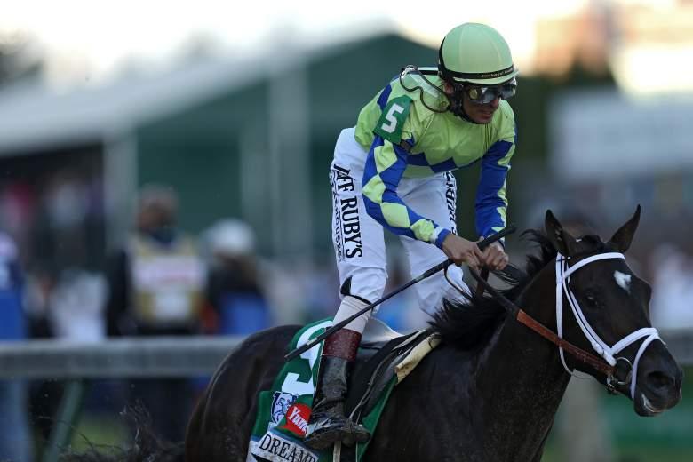 always dreaming, preakness, odds, contenders, horses