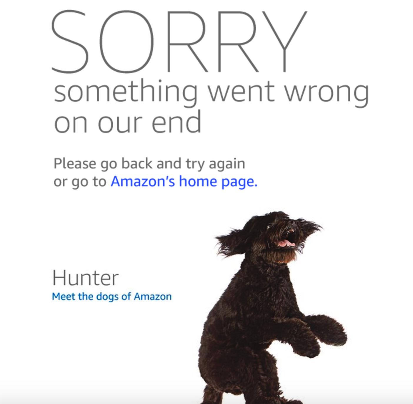 amazon down, is amazon down, amazon down message, amazon website broken