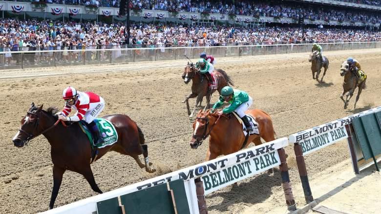 Horse betting trifecta payouts belmont fanduel betting
