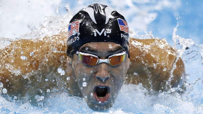 michael phelps, shark, race, how fast swim