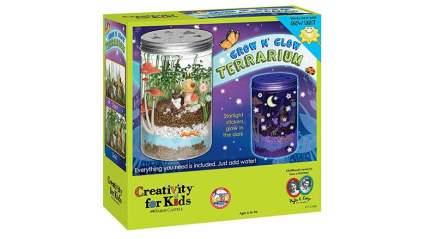 grow n glow terrarium