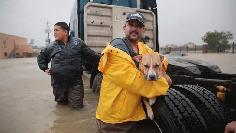 Hurricane Harvey levees, Columbia Lakes levee, Brazoria County evacuation