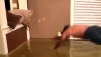 man diving for fish in living room