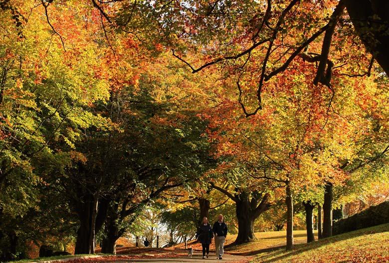 fall equinox history, fall equinox origins, autumnal equinox history, autumnal equinox origins