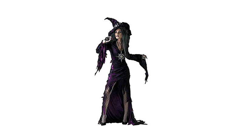 witch costume, adult witch costume, sexy witch costumes, witch halloween costume, womens witch costume, halloween costumes, disguise costumes
