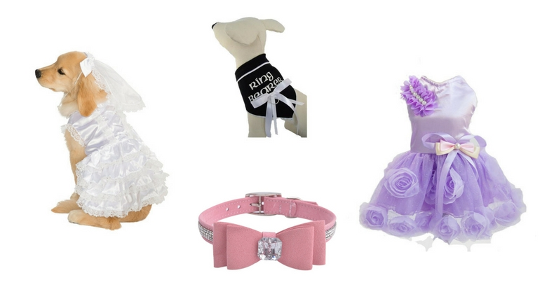 dog wedding, dog tuxedo, dog wedding dress, dog ring bearer