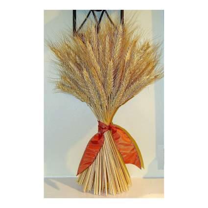 Bundle of dried wheat