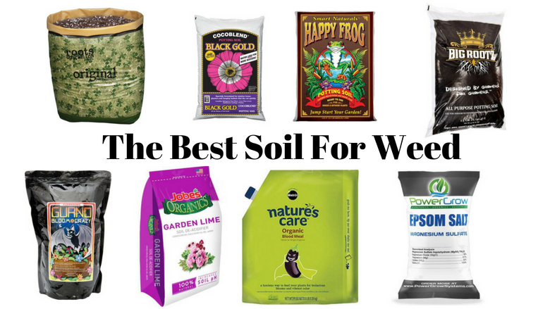 best soil for weed