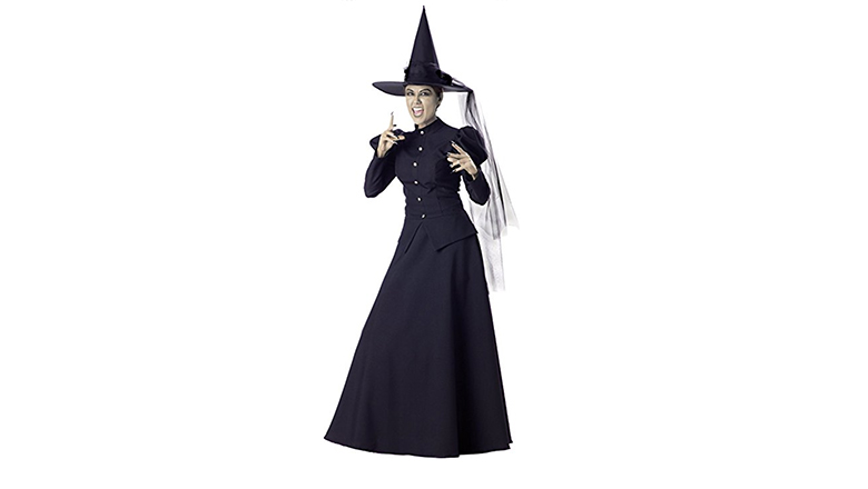 witch costume, adult witch costume, sexy witch costumes, witch halloween costume, womens witch costume, halloween costumes, incharacter costumes
