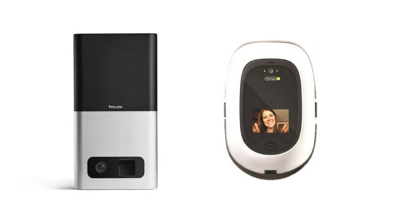 pet camera, dog camera, petcam, cat camera, pet monitor