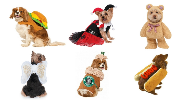Tiny Dog Halloween Costumes.Top 10 Best Small Dog Halloween Costumes 2017 Heavy Com