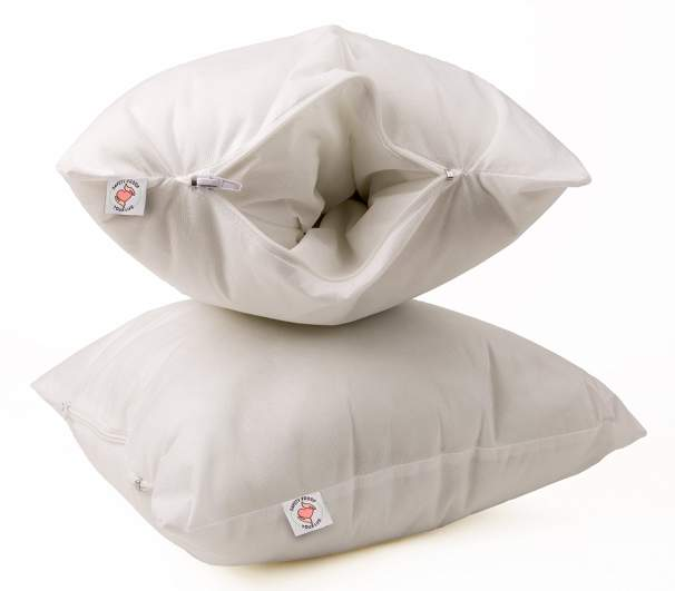 Throw Pillow Safe