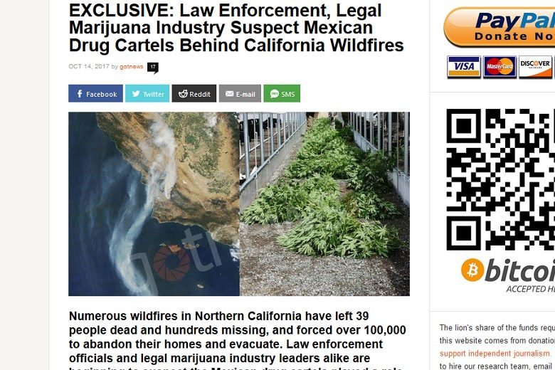 GotNews, Charles C. Johnson, wildfire, Mexican cartels
