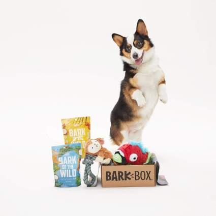 BarkBox Starter Kit