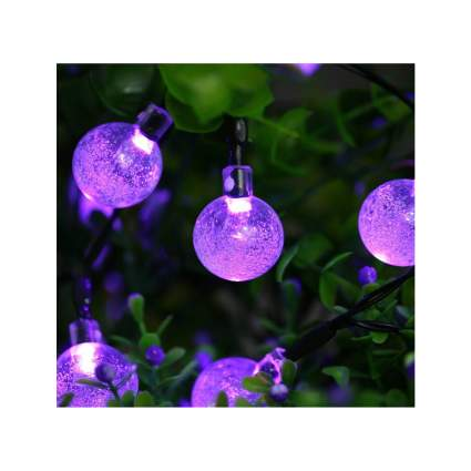 purple solar sting lights
