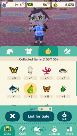 Animal Crossing Pocket Camp Items