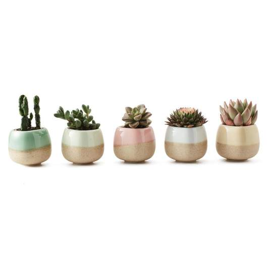 SUN-E 5 in Set 2.2 Inch Ceramic Planter